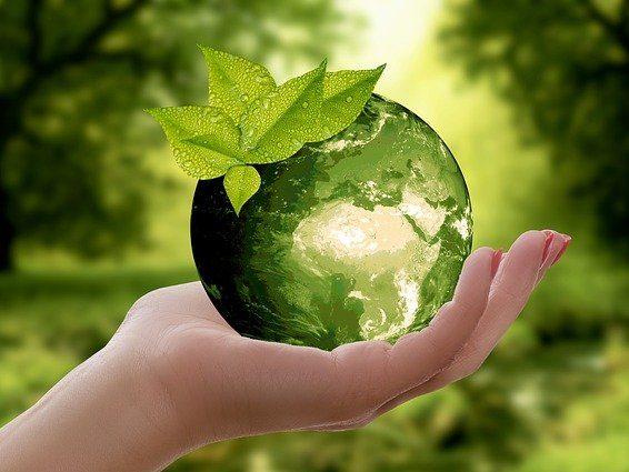 Transition écologique et voiture électrique